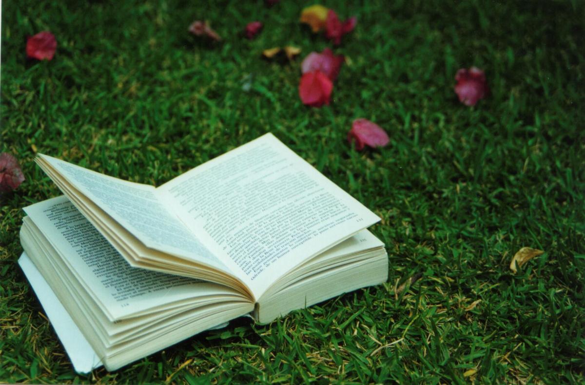 Os manuais, a leitura e a escrita na tradução